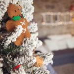 Speciale Natale: il servizio fotografico a casa vostra